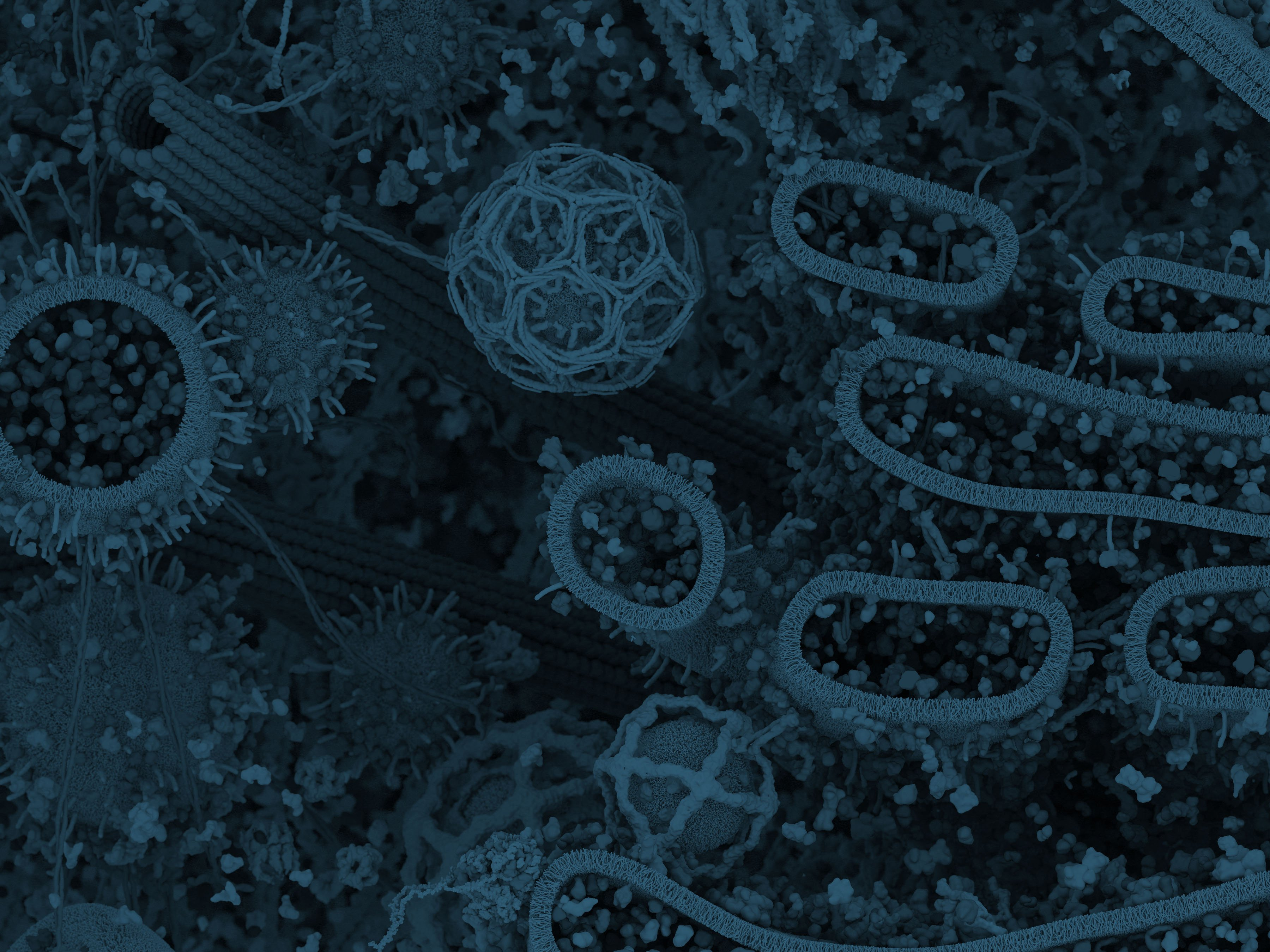 CST Molecular Landscape_footer